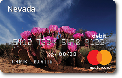 www.bankofamericanevadauidebitcard.com